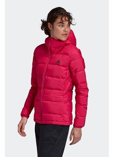 adidas Adidas Kadın Günlük Mont W Helionic Ho J Ge5818 Pembe
